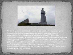 Чуть в стороне от монумента находятся два зенитных орудия. Во время боевых де