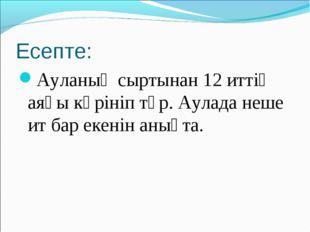 Есепте: Ауланың сыртынан 12 иттің аяғы көрініп тұр. Аулада неше ит бар екенін