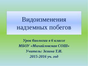 Видоизменения надземных побегов Урок биологии в 6 классе МБОУ «Михайловская С