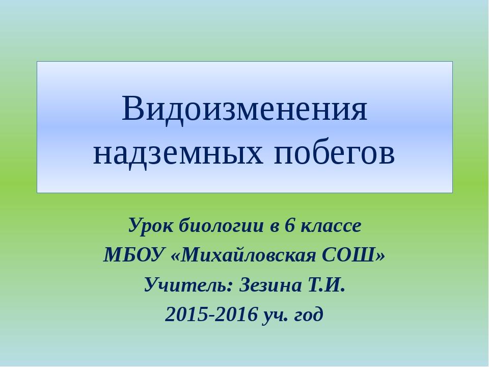 Видоизменения надземных побегов Урок биологии в 6 классе МБОУ «Михайловская С...