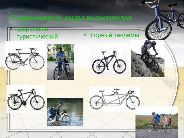 Современные виды велосипедов Дорожный, туристический Горный,тандемы