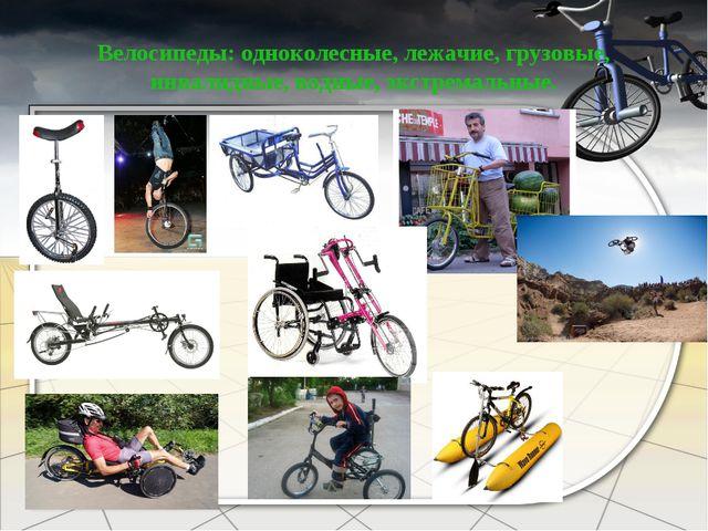Велосипеды: одноколесные, лежачие, грузовые, инвалидные, водные, экстремальные.
