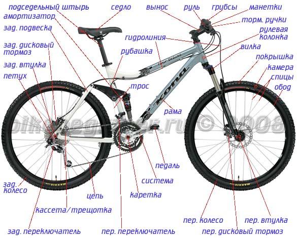 http://gallery.ykt.ru/galleries/bicycle/2011/12/985706_0.jpg
