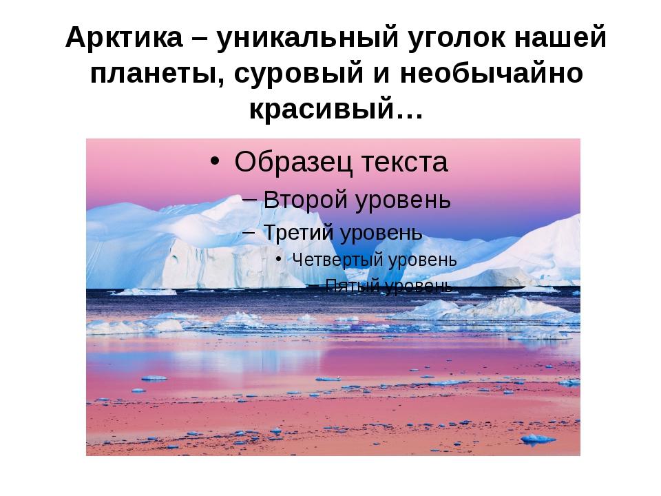 Арктика – уникальный уголок нашей планеты, суровый и необычайно красивый…