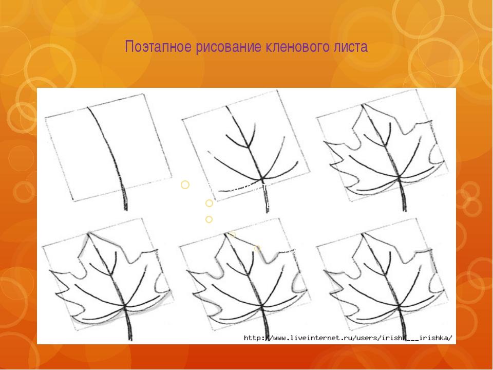 Как рисовать листы клёна