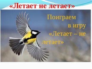 Поиграем в игру «Летает – не летает»  «Летает не летает»