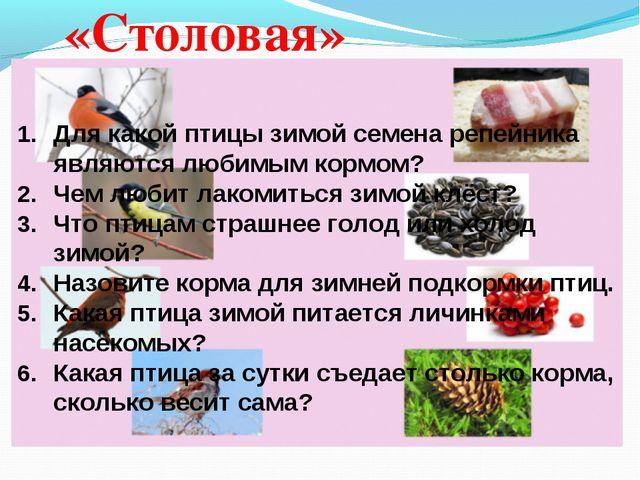 «Столовая» Для какой птицы зимой семена репейника являются любимым к...