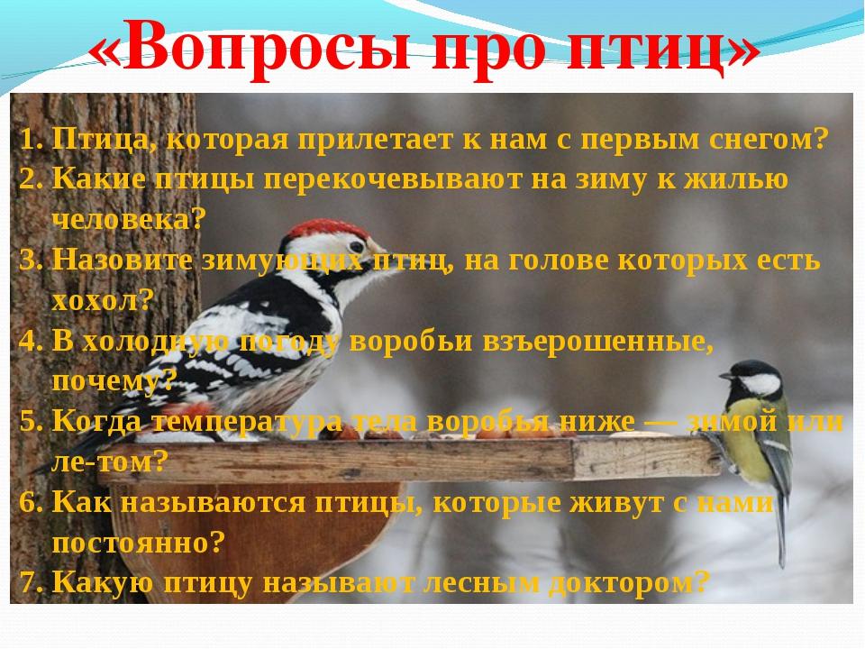 «Вопросы про птиц» Птица, которая прилетает к нам с первым снегом? К...