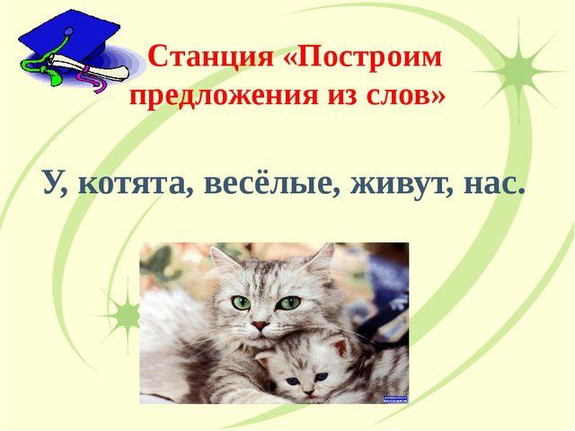 Станция «Построим предложения из слов» У, котята, весёлые, живут, нас.