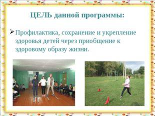 ЦЕЛЬ данной программы: Профилактика, сохранение и укрепление здоровья детей ч