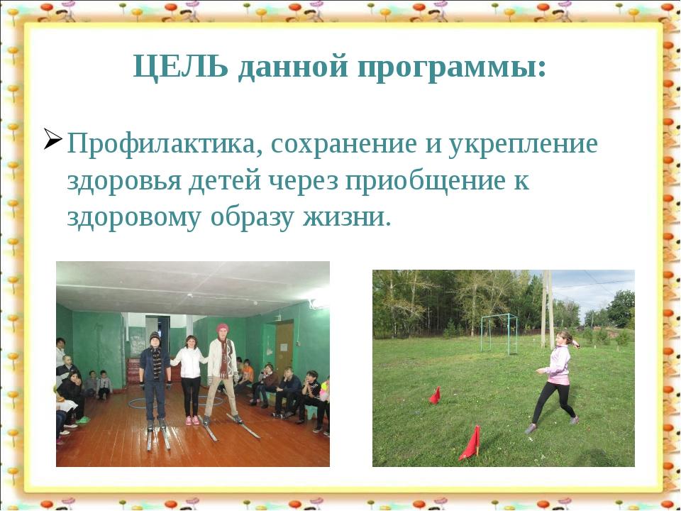ЦЕЛЬ данной программы: Профилактика, сохранение и укрепление здоровья детей ч...