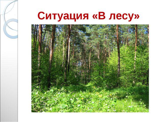 Ситуация «В лесу»