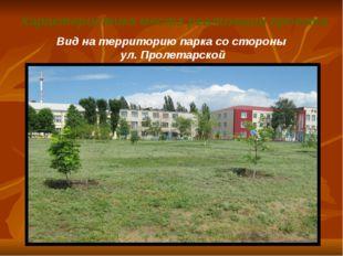 Характеристика места реализации проекта Вид на территорию парка со стороны у