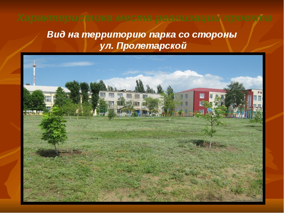 Характеристика места реализации проекта Вид на территорию парка со стороны у...
