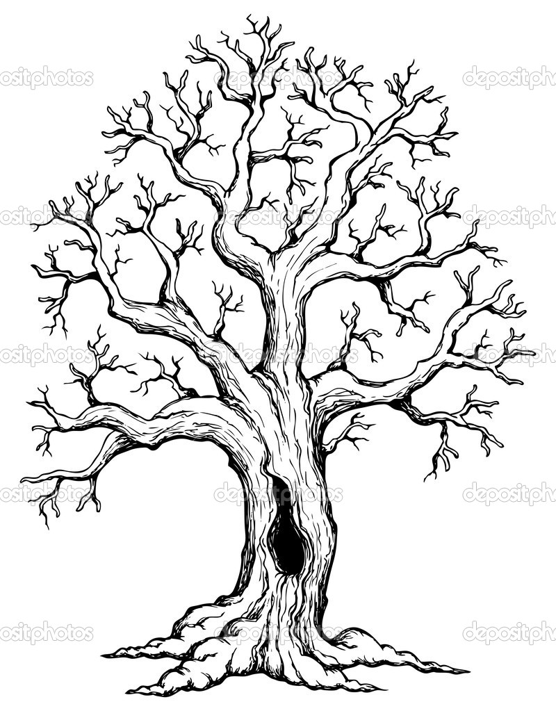 http://static9.depositphotos.com/1005091/1155/v/950/depositphotos_11550871-Tree-theme-drawing-1.jpg