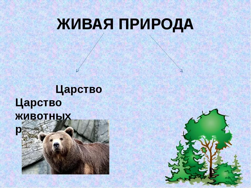 ЖИВАЯ ПРИРОДА Царство Царство животных растений