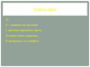 Орфография 20 Я – травянистое растение С цветком сиреневого цвета, Но переста