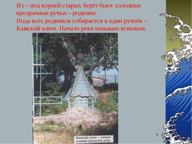 Самгина Любовь Владимировна - учитель начальных классов * Из – под корней ста...