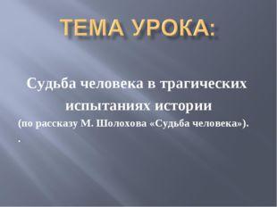 Судьба человека в трагических испытаниях истории (по рассказу М. Шолохова «Су