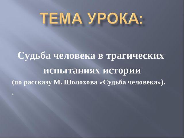 Судьба человека в трагических испытаниях истории (по рассказу М. Шолохова «Су...