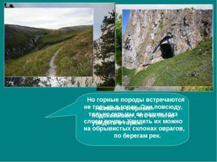 Название «горные» подсказывает, что их легко увидеть в горах. Но горные поро