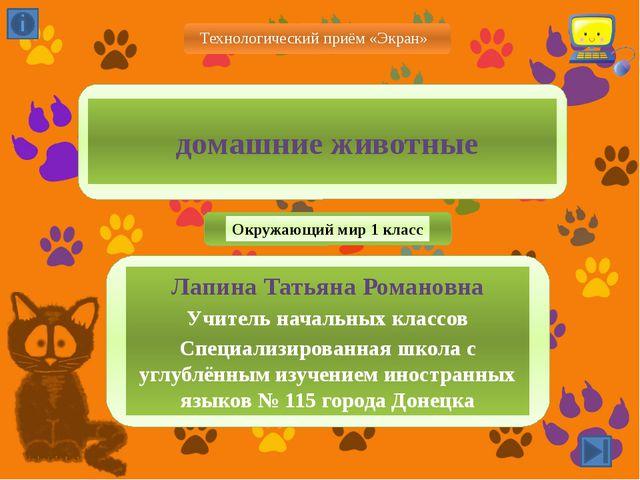 домашние животные Лапина Татьяна Романовна Учитель начальных классов Специал...