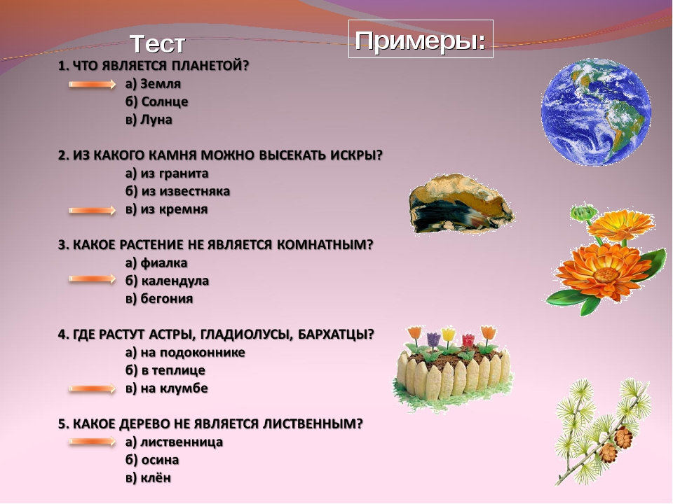 Примеры: Тест