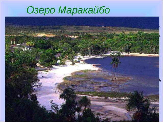 Озеро Маракайбо Марака́йбо— крупное солоноватое озеро в Венесуэле. Озеро сое...