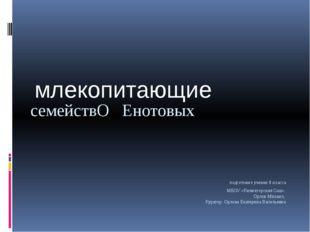 подготовил ученик 8 класса МБОУ «Княжегорская Сош» Орлов Михаил, Куратор: Ор