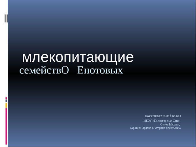 подготовил ученик 8 класса МБОУ «Княжегорская Сош» Орлов Михаил, Куратор: Ор...