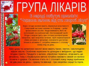 Кора і ягоди калини мають лікувальні властивості. Спиртовий екстракт калини т