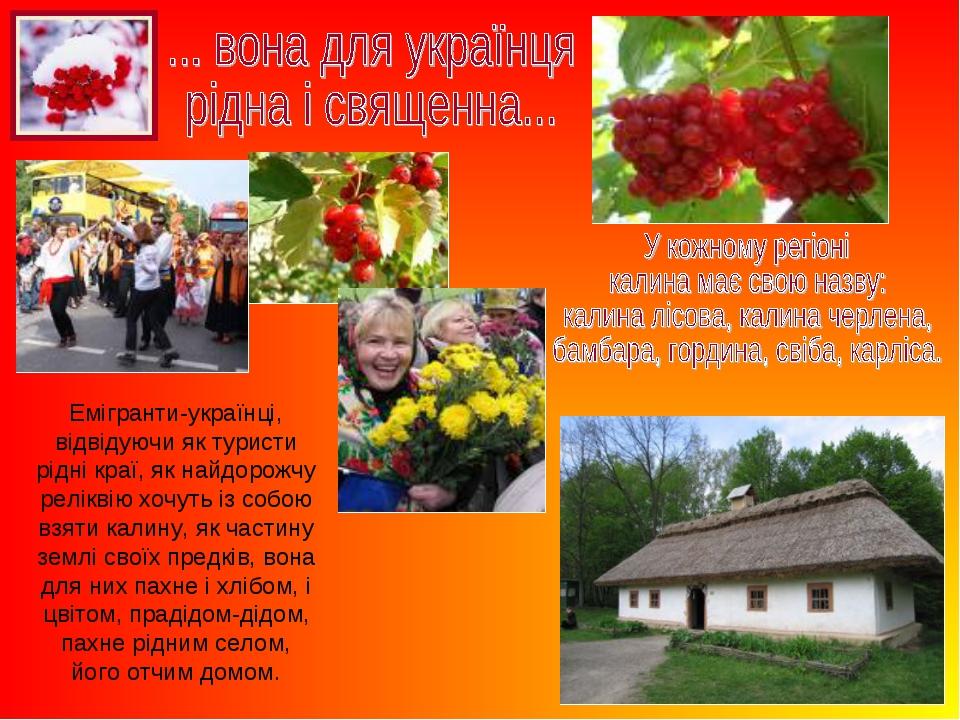 Емігранти-українці, відвідуючи як туристи рідні краї, як найдорожчу реліквію...