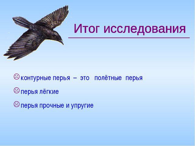 контурные перья – это полётные перья перья лёгкие перья прочные и упругие