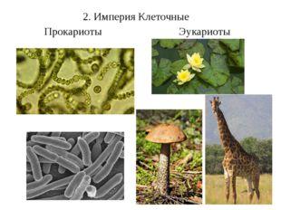 2. Империя Клеточные Прокариоты Эукариоты Прокариоты . Сине-зелёные: нет поло