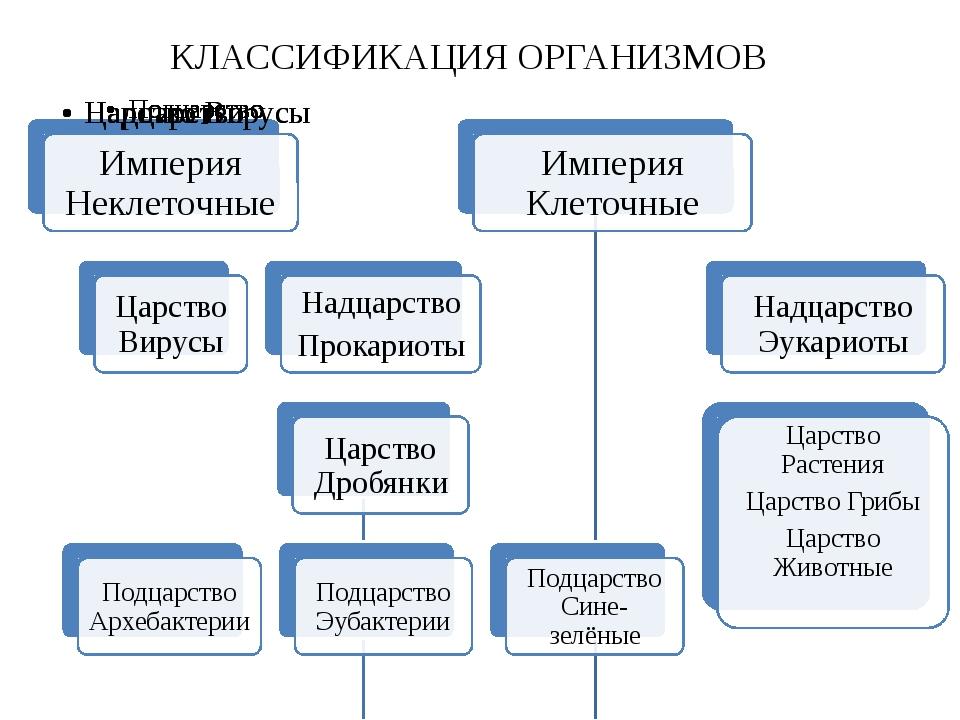 КЛАССИФИКАЦИЯ ОРГАНИЗМОВ