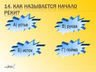 А) устье Б) исток Г) пойма В) рукав