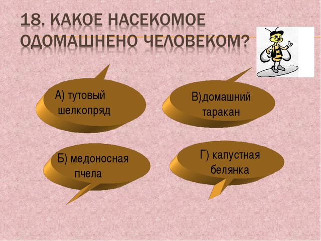 Г) капустная белянка В)домашний таракан А) тутовый шелкопряд Б) медоносная пч...