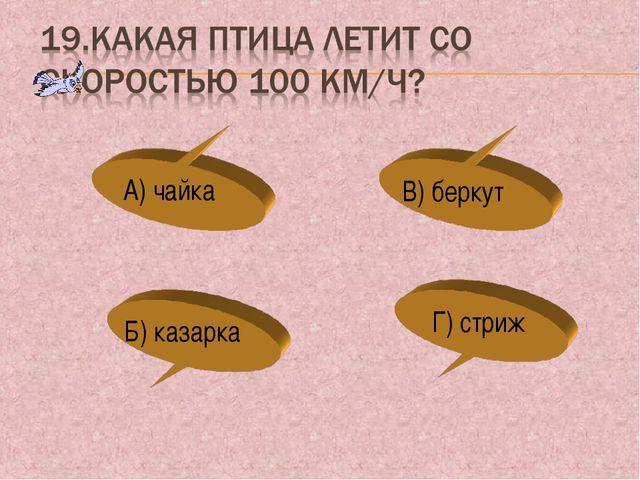 А) чайка Б) казарка В) беркут Г) стриж