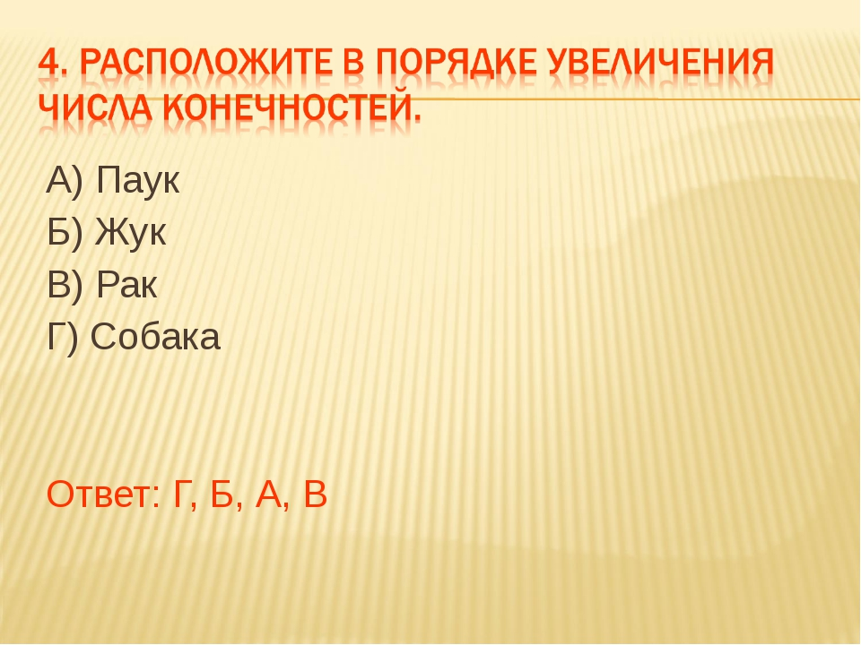 А) Паук Б) Жук В) Рак Г) Собака Ответ: Г, Б, А, В