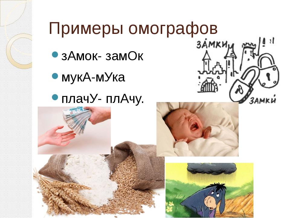 Примеры омографов зАмок- замОк мукА-мУка плачУ- плАчу.