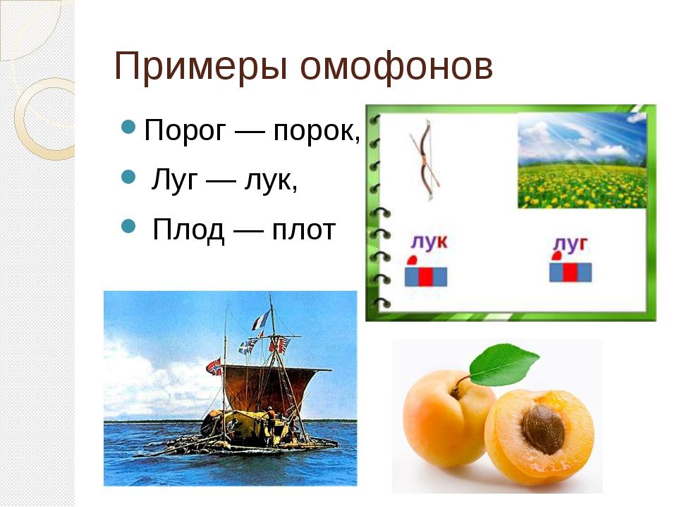 Примеры омофонов Порог — порок, Луг — лук, Плод — плот