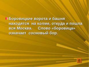Боровицкие ворота и башня находятся на холме, откуда и пошла вся Москва. Слов
