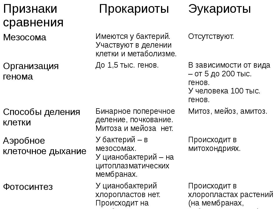 Признаки сравнения Прокариоты Эукариоты Мезосома Имеются у бактерий. Участвую...