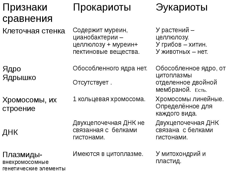 Признаки сравнения Прокариоты Эукариоты Клеточная стенка Содержитмуреин,циано...