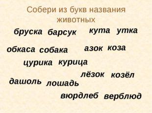 Собери из букв названия животных бруска барсук кута утка обкаса собака азок к