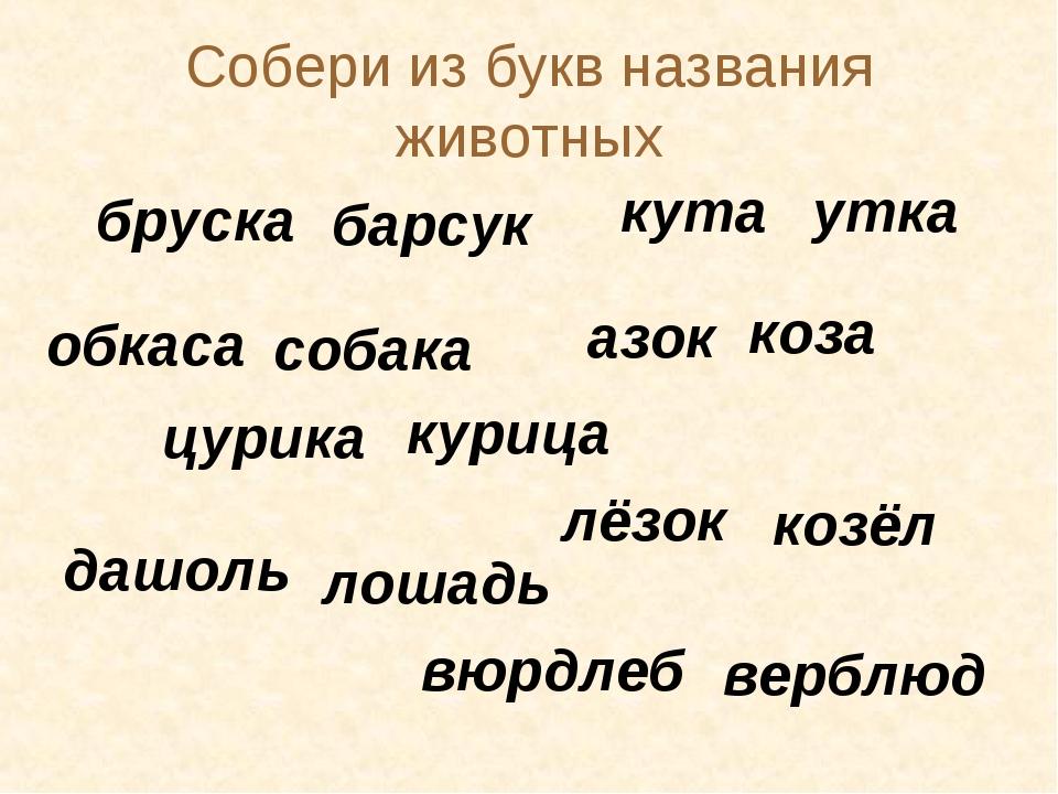Собери из букв названия животных бруска барсук кута утка обкаса собака азок к...