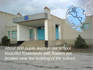 About 800 pupils learn in our school. Beautiful flowerbeds with flowers are