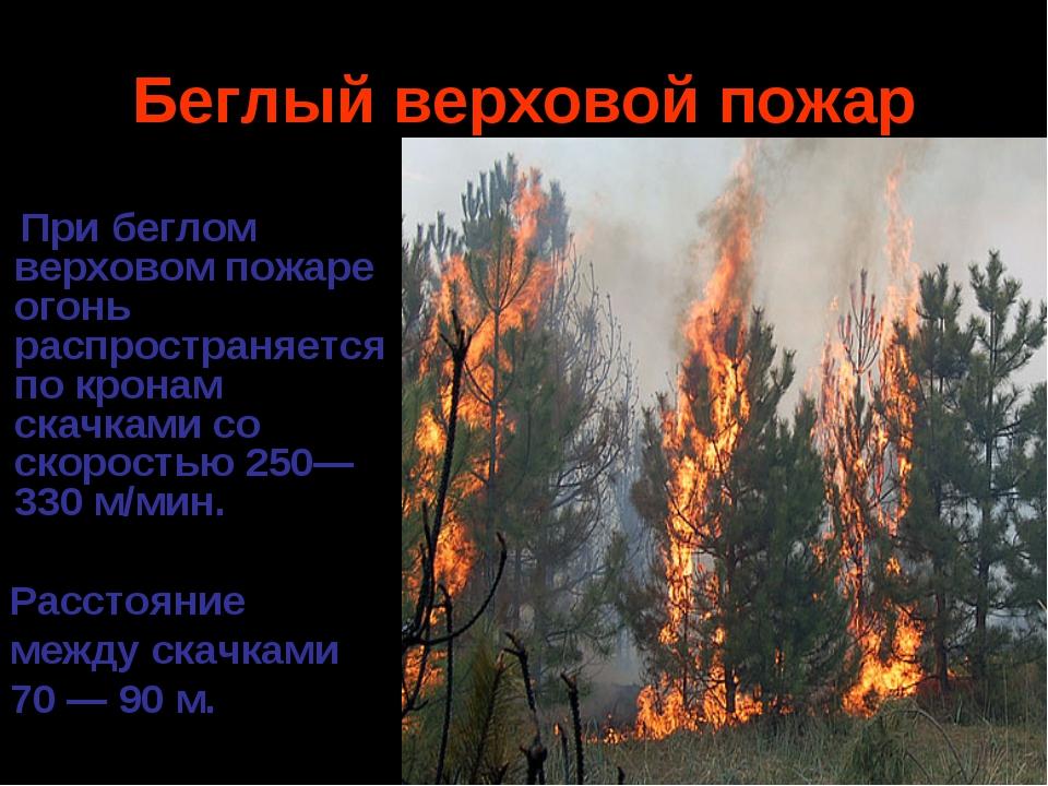 Беглый верховой пожар При беглом верховом пожаре огонь распространяется по кр...