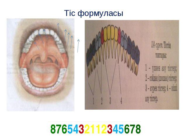 Тіс формуласы 8765432112345678