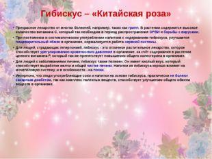 Гибискус – «Китайская роза» Прекрасное лекарство от многих болезней, например
